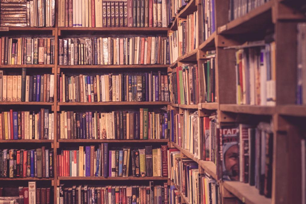 Viele Informationen zum bloggen habe ich aus Büchern und von Profis!